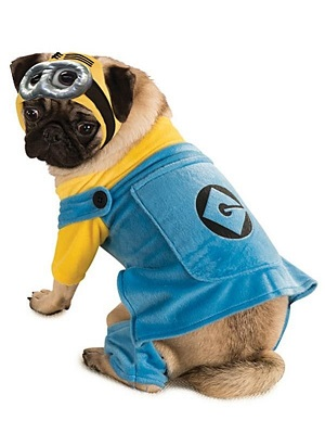 Despicable Me Dog Halloween Costume