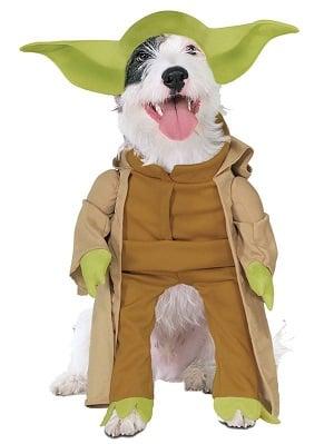 Star Wars Yoda Dog Halloween Costume
