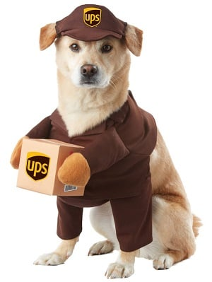 UPS Pal Costume for Pets