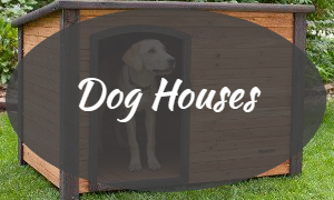 Shop & Buy The Latest Dog Houses