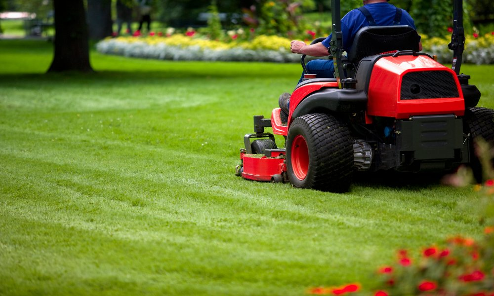 Caring For Your Lawn When It's HOT, HOT, HOT